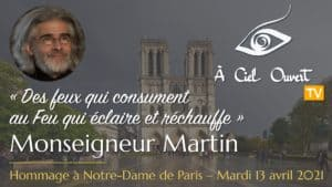Des feux qui consument au Feu qui éclaire et réchauffe – Monseigneur Martin
