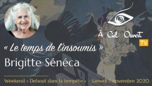 Le temps de l'insoumis – Brigitte Sénéca